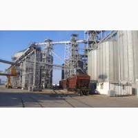 Экспорт кукуруза в Сирию