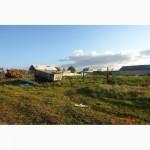 Продается мини-ферма со своим пастбищем и жилым домом в 250 км от Москвы