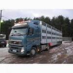 Услуги по перевозке скота
