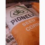 Семена гибридов подсолнечника Пионер