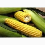 Реализуем кукурузу 3, 4 класса