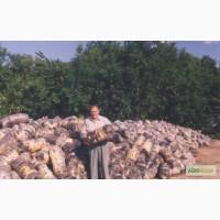 Продам грибные блоки вешенки отработанные