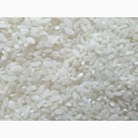 Продаем рис оптом