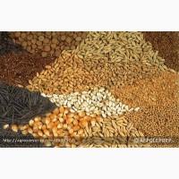 ООО НПП «Зарайские семена» продает зерносмесь