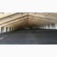 Ремонт и восстановление покрытия