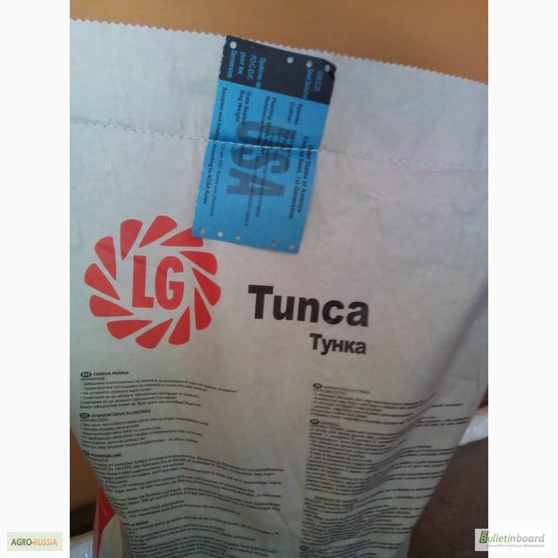 Семена подсолнуха тунка
