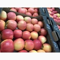 Яблоки. Производство и продажа