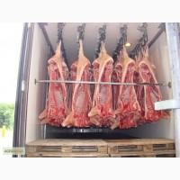 Мясо свинины охлажденное/замороженное, в наличии в Москве. Лучшее предложение