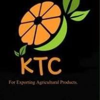 Продам овощи и фрукты из Египта