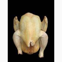 Продается свежее мясо бройлерных цыплят и кур несушек (1, 0 - 3.0 кг)