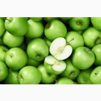 Яблоки Голден Раш