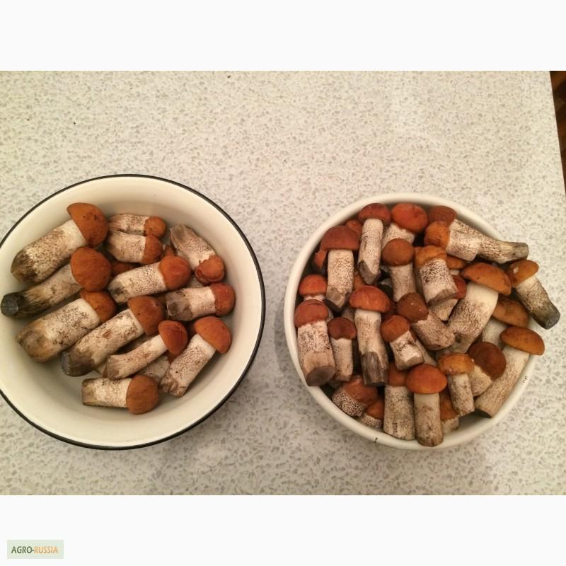 Рецепт блюд с телятиной
