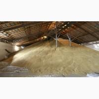 Пшеница 4, 5 класс