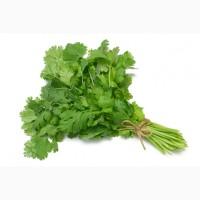 Продаю зелень из Армении
