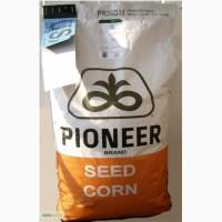 ������ �������� ������(PIONEER), ���