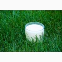 Обезжиренное молоко