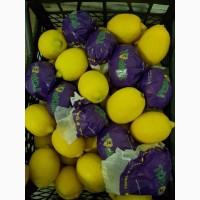 Продам лимон Турция свежий, сорт Ламас. Прямой поставщик