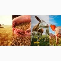 Скупаем и Продаём Все для сельского хозяйства в одном месте