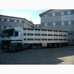 Перевозки скота спецавтотранспортом
