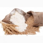 Зерно:пшеница, овес, ячмень, кукуруза