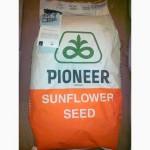 Гибриды семян подсолнечника Пионер ПР63Г40