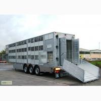 Услуги по перевозке и доставки сельскохозяйственных животных, крс