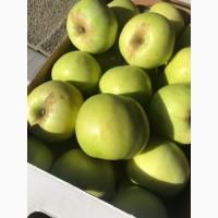 Яблоки с собственных садов. Производитель