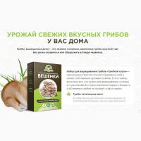 Продам Набор для выращивания грибов в домашних условиях