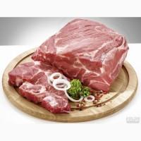 Мясо свинины оптом. Актуальный прайс. Цена/качество
