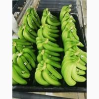 Бананы Ананасы
