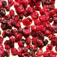 Смородина красная (плоды) сухие Алтай 2017 год (оптом от 5кг)