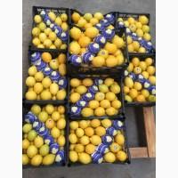 Лимоны Турция