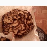 Продам сухой гриб