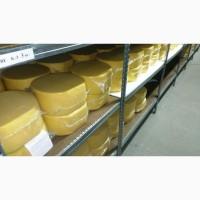 Сыры ГОСТ и Сырный продукт оптом от производителя