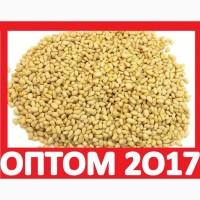 ᐉ 2017 Купить ЯДРО КЕДРОВОГО ОРЕХА Оптом Москва! Очищенное Ядро Кедровое Продам Лицензия