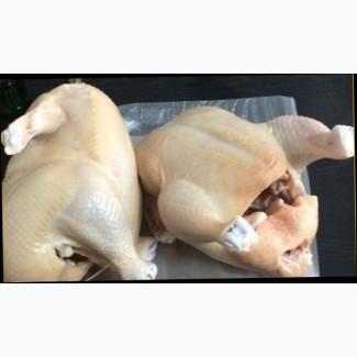 Продаем мясо бройлеров, кур, гусей и уток