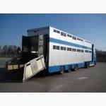 Заказ спецавтотранспорта для перевозки скота