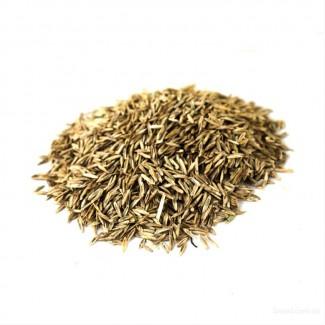 Семена райграса