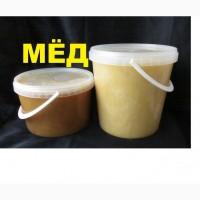 Мёд осенний