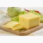 Предлагаем сыр белорусского производства