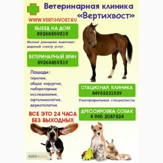 Ветеринарный врач 24 часа