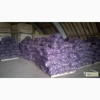 Продаем семена картофеля разных сортов