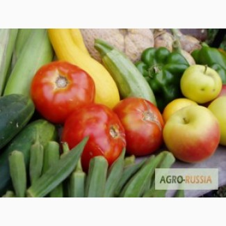 Плодо-овощная консервация, замороженные фрукты и ягоды, фрукты напрямую из Сербии оптом