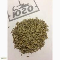 Семена Райграса пастбищного ВИК-66 РС1