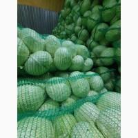 Продам капусту белокачанную