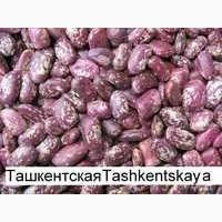 Фасоль 3D Ташкентский из Киргизии