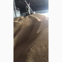 Соя на кормовые цели