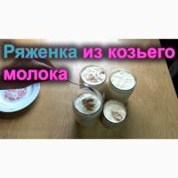 Ряженка и другие продукты из козьего молока