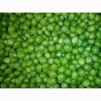 Купим Горох Зеленый (для консервации) оптом