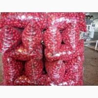 Предлагаем приобрести оптом редис сорта Шанда по цене от производителя